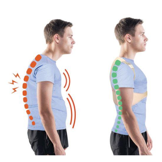 1832001 - Comfortisse Posture Houding Corrector 2