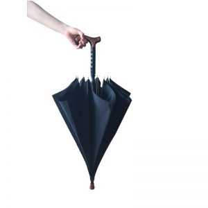 1808049 - Wandelstok Paraplu